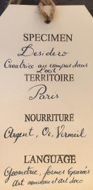 Desidero Le blog - Desidero chez Curieux 1